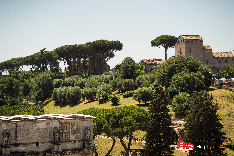 ROME_Palatine-Park-green