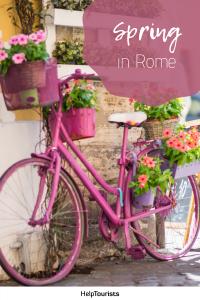 Pin Spring in Rome